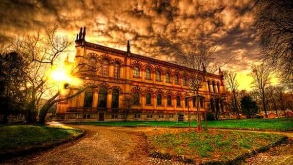 176-176-museo-di-storia-naturale-museo-di-storia-naturale-milano-3