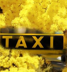 taxi_mimose